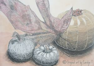 Fall Harvest, pen and ink with watercolor