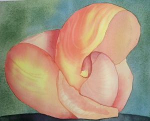 Shell in shell, watercolor