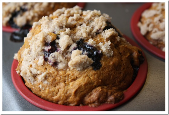 blueberry pumpkin muffin