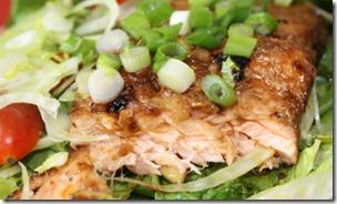 salmon salad cut
