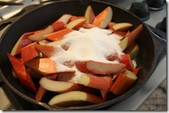 rhubarb_cooking