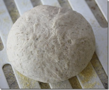european_peasant_bread_raw_dough