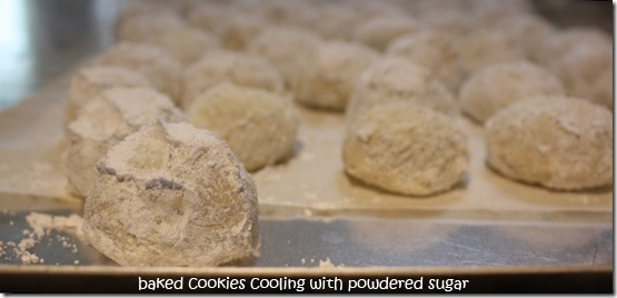 mex_wedding_cookies_sugaring