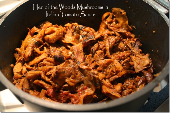 hen_of_the_woods_in_tomato_sauce