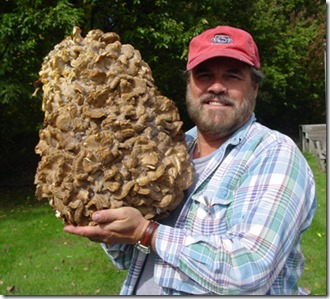 joe_holding_big_mushrooms