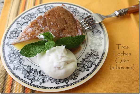 tres_leches_cake_slice