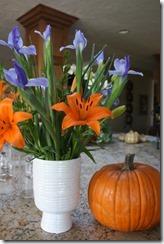 pumpkin_flowers