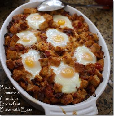 bacon_cheddar_egg_casserole1