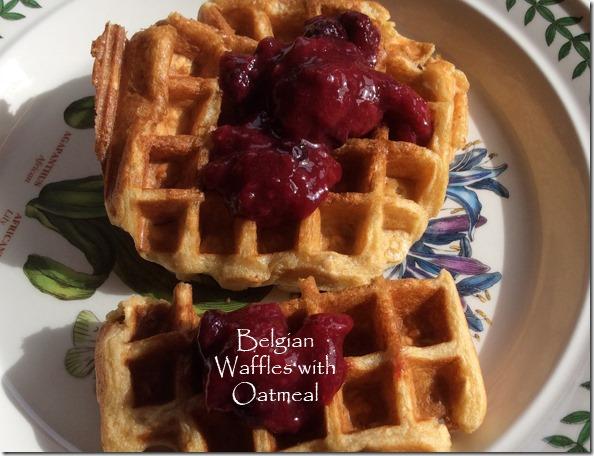 belgian_waffles_oatmeal