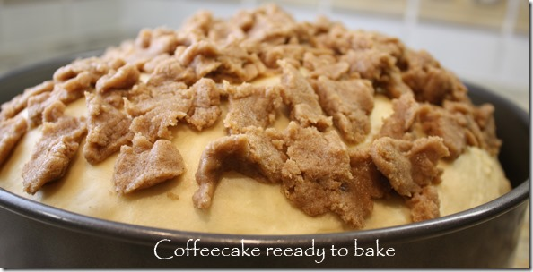 cream_filled_coffeecake_ready_to_bake