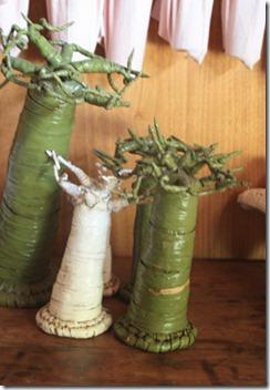 baobob_trees_decor