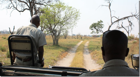 game_drive_2nd_seat