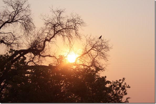xaranna_sunset