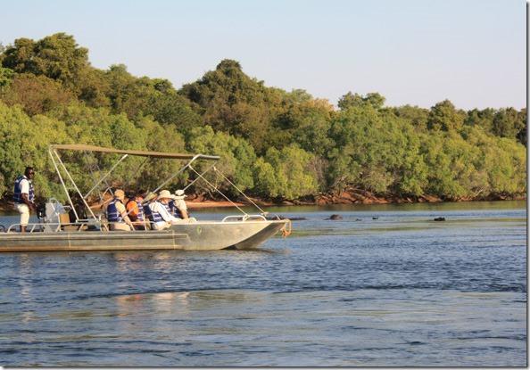 zambezi_hippo_boat