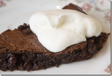 choc_dried_cranb_cake_slice