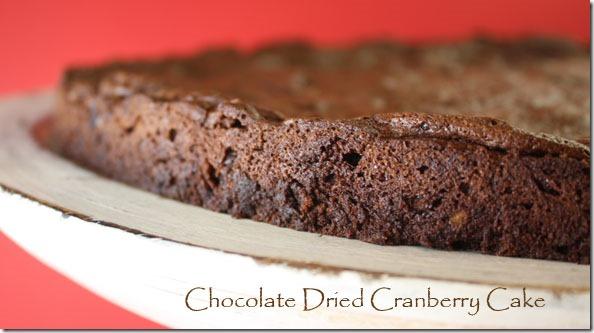 choc_dried_cranberry_cake