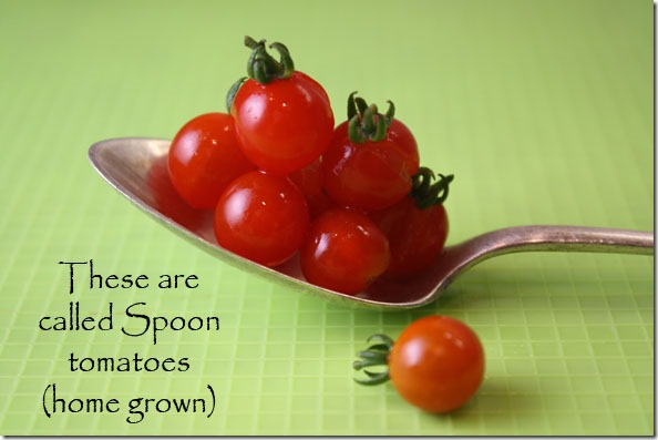 spoon_tomatoes
