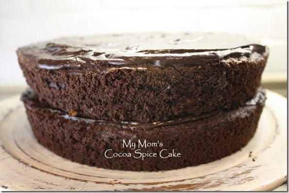 moms_cocoa_spice_cake