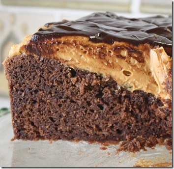 choc_dlc_cake_slice