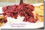 cranberry_jalapeno_salsa_appetizer_175