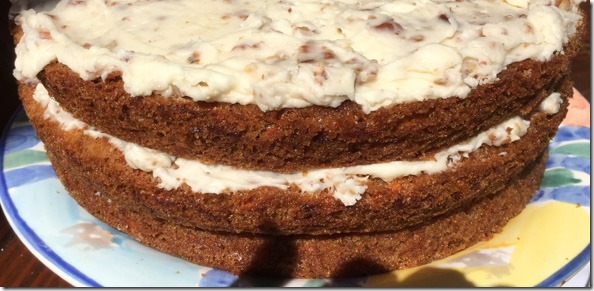 neva_tees_carrot_cake_whole