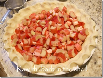 rhubarb_in_shell_raw