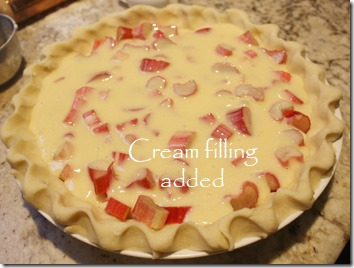 rhubarb_pie_raw_filling_added