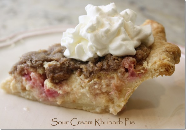 sour_cream_rhubarb_pie_slice