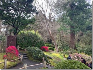 japanese_tea_garden1
