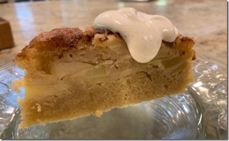 apple_cinn_custard_cake_slice