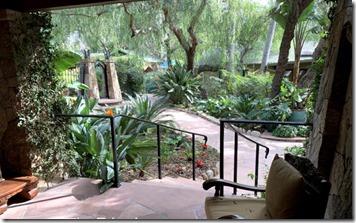 emerald_iguana_porch