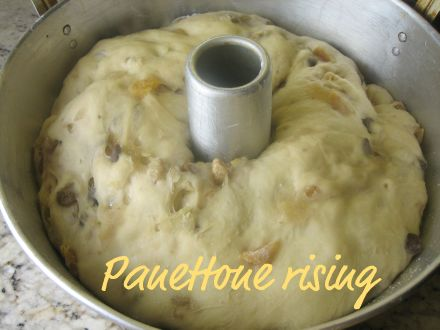 panettone dough rising in a tube pan