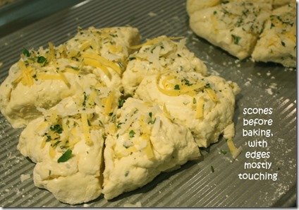 herb_buttermilk_scones_before_baking