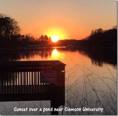 pond_sunset_clemson