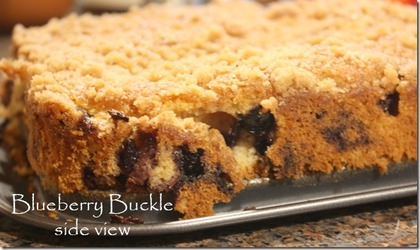 blueberry_buckle_sideview