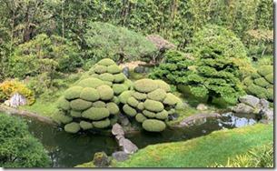 japanese_tea_garden2